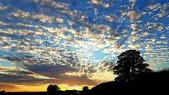 Dramatic Sky - Brompton-by-Sawdon - 2018-09-22 (BillyGoat75) Tags: sky dramatic colours clouds tree sunset bromptonbysawdon northyorkshire england