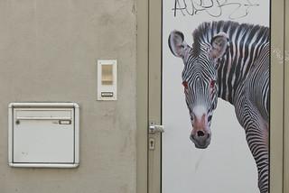 Wo das Zebra mit den blutenden Augen wohnt
