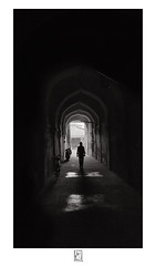 Outline (krishartsphotography) Tags: krishnansrinivasan krishnan srinivasan krish arts photography fineart fine art monochrome outline silhouette dark curves lines reflection light shadows bicycle cycle twowheeler arch building affinity photo thanjavur tanjore palace museum tamilnadu india