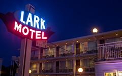 Lark Motel (ranzino) Tags: jerseyshore larkmotel newjersey stoneharbor dusk neonsign nj vacation unitedstates us