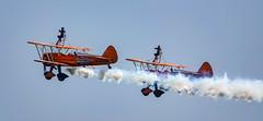 DSC04127 (Brian Wadie Photographer) Tags: twister arrows parachute wingwalkers