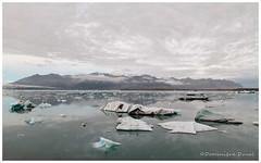 JOKULSARLON (dom-duval) Tags: islande jokulsarlon glacier lagune