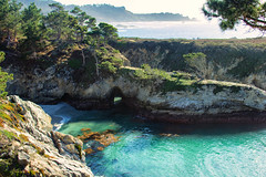 NorCal Travels 2018-26 (Maggie Houtz) Tags: norcal pointlobos