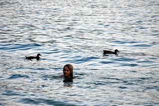 2018-08-07 Sophie and ducks, Lake Garda