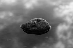 Tranquility (Jontsu) Tags: tranquility calm still water rock nature luonto suomi finland lake järvi black white bw reflection reflect fuji fujifilm fujifilmxe2 helios 58mm f2 mirrorless