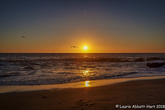 20180915  Day's End  18784-Edit (Laurie2123) Tags: fujixt2 fujinon1024mm lagunabeach laurieturnerphotography laurietakespics laurie2123 pacificocean victoriabeach beach coast sunset 100xthe2018edition 100x2018 image56100 cmwd cmwdorange
