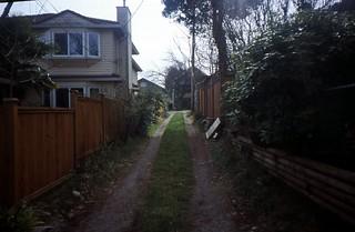grass alley