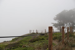 Fence in the fog (Sven Bonorden) Tags: goldengatearea fog pacificcoast coast fence path green brown sanfrancisco california kalifornien nebel küste goldengatebridge zaun