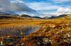 Autumn in the mountains (c3nes) Tags: norway autumn birch snowcoveredmountains snowpatches mountainbirch nationalpark mountains rondane heathlands heather fall swamp clouds folldal hedmark no