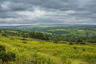A view across Dartmoor