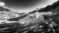 Save the glacier I (Dani Maier) Tags: obergomsvs wallis schweiz ch gletscher rohnegletscher alpen klima bw umwelt naturschutz furkapass landscape save planet