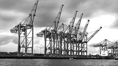 Hamburg  Containerhafen - (rotraud_71) Tags: hamburg containerhafen bw water sky clouds elbe altona explore