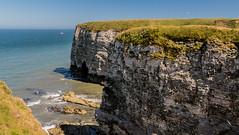 2018-06-30 Flambro-1440798.jpg (Hands in Focus) Tags: flamboroughcliffs lumixfz1000 ocean cliffs eastridingofyorkshire sea