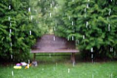 Sajab vihma (Jaan Keinaste) Tags: pentax k3 pentaxk3 eesti estonia viljandimaa tipuküla soomaa vihm rain pink