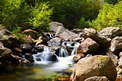 Limpidezza (rena@ovest) Tags: acqua cascata sangone coazze forno bosco sentiero pietra stone