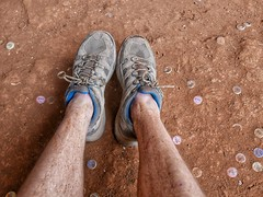 Dusty legs and beer-bottle tops.
