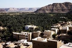 Tarim - houses and palm grove (motohakone) Tags: jemen yemen arabia arabien dia slide digitalisiert digitized 1992 westasien westernasia ٱلْيَمَن alyaman