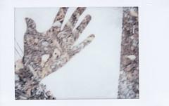 Hand (willradphotography) Tags: instax mini film hand double exposure willradford canoscan abstract