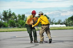 Colorado Army National Guardsmen from the 2nd Battalion 135th Aviation at Buckley Air Force Base in Aurora, Colo. rescue flood victims. (CONG)