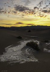 Memories of Water (courtney_meier) Tags: california deathvalley deathvalleynationalpark grapevinemountains landscape mesquitedunes nationalpark usnationalpark clouds dawn desert dunes morning morninglight rock sand sanddunes sunrise