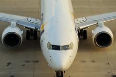 BOEING 737-800 (Teruhide Tomori) Tags: airplane aircraft jet japan japon kobe skymark boeing737800 kobeairport 日本 スカイマーク 神戸空港 神戸 ボーイング737 ジェット機 飛行機 航空機