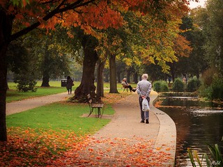 Autumn Stroll (EXPLORED)