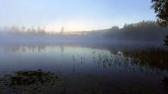 P1120573a (SeppoU) Tags: suomi finland lohja nummi järvi lake aamu morning utu mist syyskuu september 2018 lumix