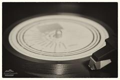 Música del pasado, música mejor (J.Gargallo) Tags: disco vinilo música tocadiscos pinchadiscos dj aguja lp canon canon450d eos eos450d 450d tokina tokina100mmf28atxprod byn blancoynegro blanconegro blackwhite blackandwhite bw framed marco