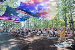 08-24-18_DPV_2874_Lockn_Yoga_by_Dave_Vann (locknfestival) Tags: garciasforest garcias forest
