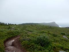 East Coast Trail, Cape Spear (Mulligan Stu) Tags: hiking newfoundland fog capespear northhead eastcoasttrail hikingtonorthhead