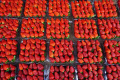 Red strawberry fruits at rural market (phuong.sg@gmail.com) Tags: agriculture background beautiful berry close closeup color colorful delicious dessert diet eat edible food fresh freshness fruit fruitage fruity garden green health healthy horizontal juicy macro market natural nature nutrient nutrition organic red refreshment ripe season seeds snack strawberry summer sweet tasty vegetarian vibrant vitamin