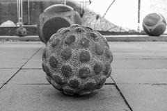 Ball (separatesunsets) Tags: edinburgh old oldtown sandstone scotland tourism uk culture travel