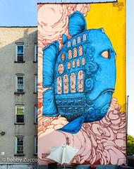 Nubian art (ZUCCONY) Tags: 2018 streetart newyork unitedstates us yesstreetart bobby zucco zuccopedro art arte graffiti mural murales ny nyc