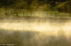 Early morning01 (FotoRoar2013) Tags: 2018 tåke vann august fotoroar2013 fog canon color colorfull moody mystery mist norway norwegen noruega norge norvegia nature norwege norvege atmosfære atmosphere atmosfera atmosphère 5dmk3