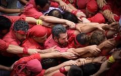Tots a una , Fem pinya . ( all to one, we make pinya ) (Alex Nebot) Tags: castellers pinya colla castells humantowers nens vermell sigma nikon d7200 catalunya catalonia cultura culture tradicions festres fiestas popular populares