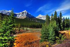 Mt. Christie and Athabasca River, Jasper National Park, Alberta (klauslang99) Tags: klauslang nature naturalworld northamerica national jasper park alberta mt christie athabasca river landscape mountains trees sky ngc