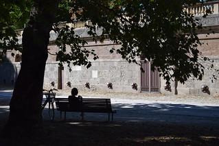 break in the corner of the park