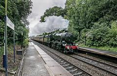 "Class 8f, 48151 works 1Z50 'The Brief Encounter' Carnforth to Carnforth through Pleasington station 15.09.2018 (alannaylor85) Tags: 48151 8f carnforth ""the brief encounter"" pleasington"