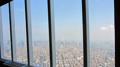 Freedom tower view 2 (Caz Haggar) Tags: freedomtower thebigapple newyork nyc
