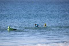 2018.09.15.07.47.27-WhompOffAustralia-068 (www.davidmolloyphotography.com) Tags: bodysurf bodysurfing bodysurfer surf beach whompoff whompoffaustralia australia newsouthwales sydney cronulla