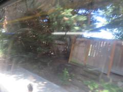 IMG_8326 (Andy E. Nystrom) Tags: bellevue washington wa bellevuewashington