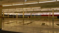 Food Lion interior (closed) (RetailByRyan95) Tags: foodlion interior abandoned closed dead empty former old vacant richmond henrico henricocounty va virginia