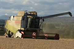 Claas Lexion 450 Combine Harvester cutting Spring Barley (Shane Casey CK25) Tags: claas lexion 450 combine harvester cutting spring barley conna grain harvest grain2018 grain18 harvest2018 harvest18 corn2018 corn crop tillage crops cereal cereals golden straw dust chaff county cork ireland irish farm farmer farming agri agriculture contractor field ground soil earth work working horse power horsepower hp pull pulling cut knife blade blades machine machinery collect collecting mähdrescher cosechadora moissonneusebatteuse kombajny zbożowe kombajn maaidorser mietitrebbia nikon d7200