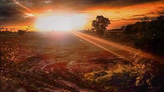 Autumnal Sunrise..