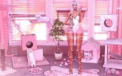 Happy Again (RoxxyPink) Tags: roxxypink roxxy pink fashionuschies fashion uschies fashionblog blog fashionblogger blogger blogging blogspot secondlifeblog secondlifeblogger secondlife second life sl 2ndlife avatar ava avi style styling virtuallife virtualworld world virtual mesh meshhead head catwa catya meshhair hair stealthic blond blonde sexy cute meshbody body maitreya meshclothes clothes clothing scandalize gacha rare lagomsl deco decoration kitten kitty bento thearcadegachaevent event fair girl girly arcade
