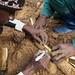 Formation, Recherche, et Environnement dans la Tshopo (FORETS), Democratic Republic of Congo