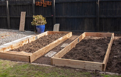 20180904_0161_40D-26 Vegetable raised beds (johnstewartnz) Tags: 40d canoneos40d 2470 2470mm ef2470mmf4l canonef2470f40l alastair gaden vegetablegarden raisedbeds canon canonapsc apsc eos 100canon