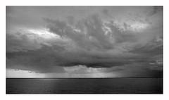 netherland (rcfed) Tags: hasselblad mediumformat film ilford hp5 plus tanol development landscape cloud sea wind monochrome light