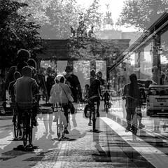 Unter den Linden (ZaglFoto.de) Tags: de deutschland bnw bnwstreet bnwstreetphoto bnwstreetphotographer bnwstreetphotography stadtlandschaft street streetphoto streetphotographer streetphotography urban berlin doublexposure multiexposure