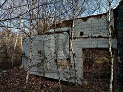 The Ruins 2 (mickygloom) Tags: ruins stone forest trees nature destroyed demolished buildings abandoned construction bricks walls wall decrepit old remnants